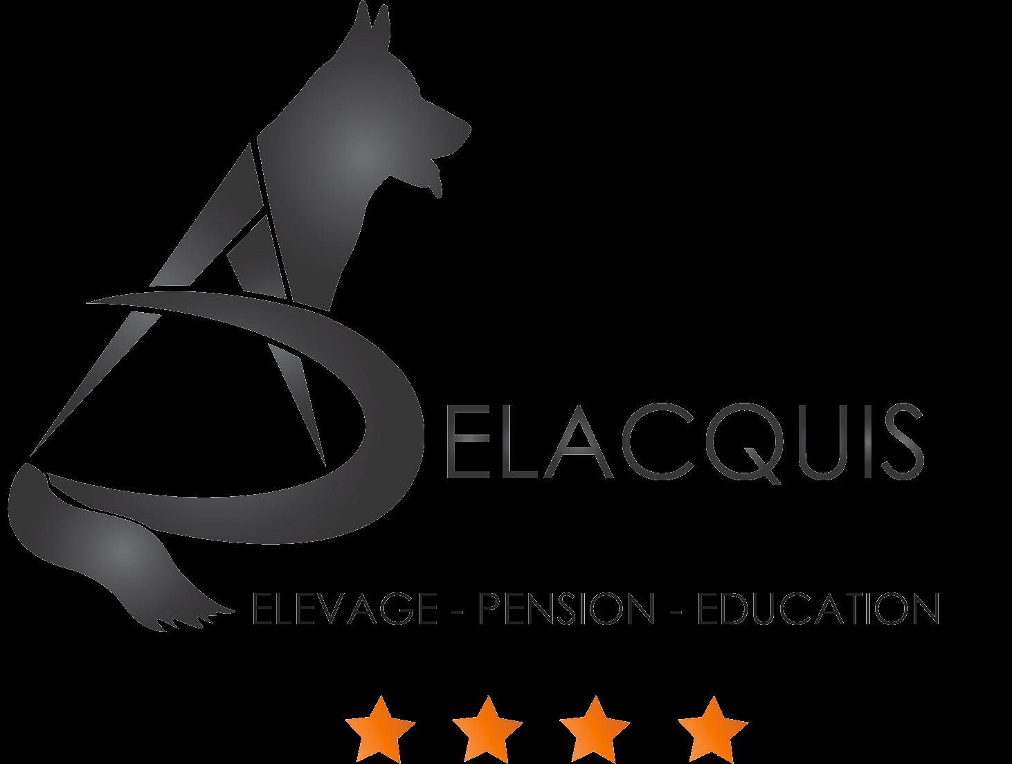 Logo Final AD copy - Accueil