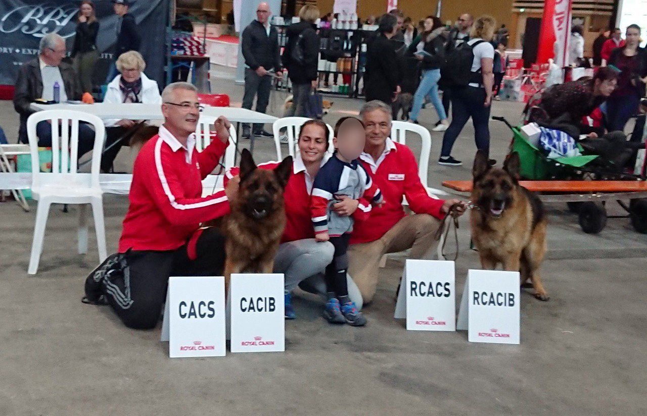 Photo 2 - Une belle victoire à l'exposition canine internationale 2019 !