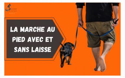 LA MARCHE AU PIED CHIEN LAISSE 400x250 - Actualités