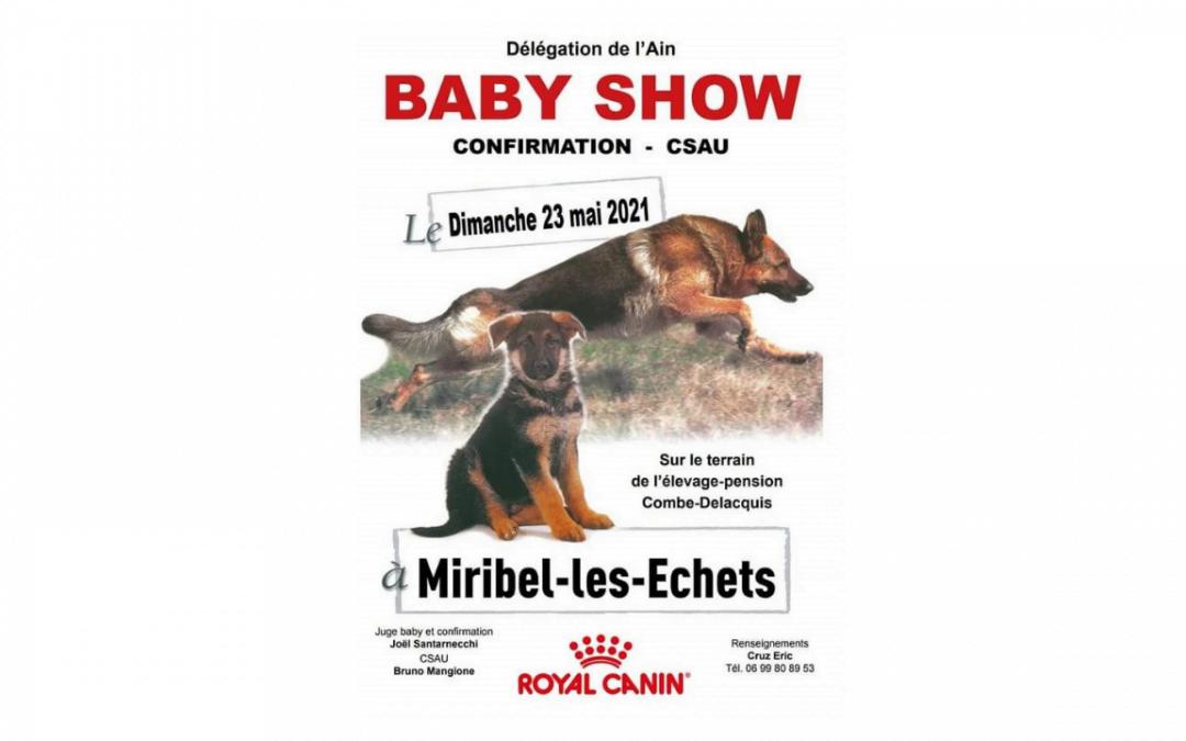 Baby Show et Confirmation Berger Allemand – C.S.A.U. le 23 mai 2021: à Miribel (01)